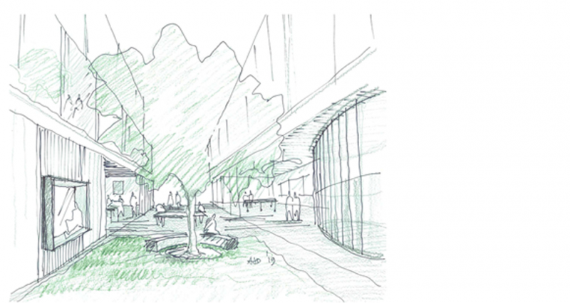 The Nature Of New School Design An Evolving Concept Architectus